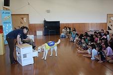 ガンバレ介助犬、JA共済はたらくワンワンランド